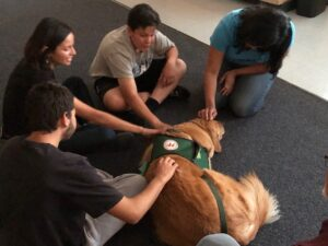 Chino Hills - CVUSD Alternative Education Center - people interacting with therapy dog